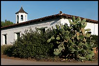 Cactus and adobe house, Old Town State Historic Park. San Diego, California, USA (color)