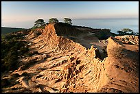 Broken Hill and Ocean,  Torrey Pines State Preserve. La Jolla, San Diego, California, USA ( color)