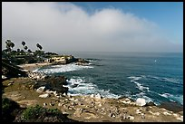 San Jolla Cove and seabirds. La Jolla, San Diego, California, USA