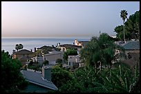 Villas and mediterranean vegetation at dawn. Laguna Beach, Orange County, California, USA (color)