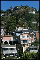 Houses on verdant hillside. Laguna Beach, Orange County, California, USA ( color)