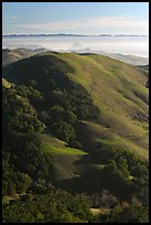 Hills, with coasline and Morro rock in the distance. California, USA