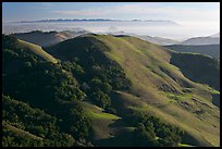 Green hills, with cost in the distance. California, USA