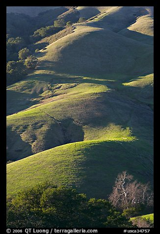 Emerald hills. California, USA (color)