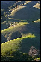 Emerald hills. California, USA