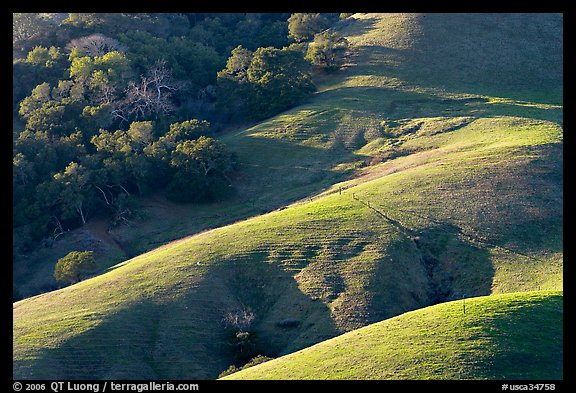 Hills and trees. Morro Bay, USA (color)