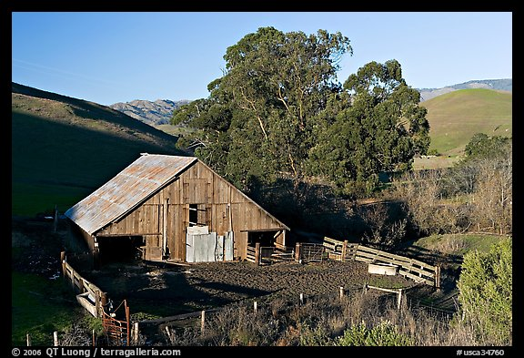 Barn and cattle-raising area. California, USA