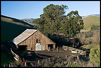 Barn and cattle-raising area. California, USA (color)