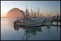 Fishing fleet and Morro Rock, sunset. Morro Bay, USA (color)