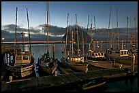 Fishing boats at dusk. Morro Bay, USA (color)