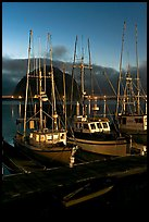 Lighted fishing boats and Morro Rock. Morro Bay, USA (color)