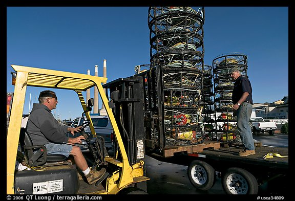 Men loading crab traps onto a truck. Morro Bay, USA (color)