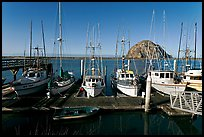 Harbor and Morro Rock, morning. Morro Bay, USA (color)