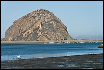 Yachts and Morro Rock. Morro Bay, USA