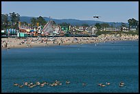 Pelicans, beach, and amusement park. Santa Cruz, California, USA (color)