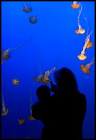 Woman holding child in front of jellyfish, Monterey Bay Aquarium. Monterey, California, USA (color)