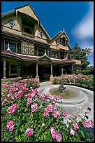Roses and facade. Winchester Mystery House, San Jose, California, USA ( color)