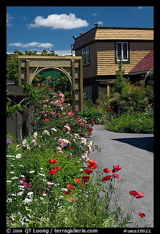 Flowers in backyard. Winchester Mystery House, San Jose, California, USA