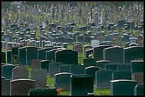 Headstones, Colma. California, USA (color)