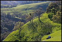 Couple sitting on hillside in early spring, Sunol Regional Park. California, USA ( color)