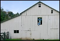 Barn with figures in window and cats, Happy Hollow Farm, Rancho San Antonio Park, Los Altos. California, USA (color)