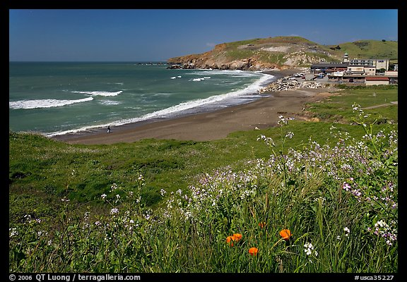 Rockaway Beach and wildflowers, Pacifica. San Mateo County, California, USA (color)