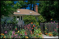 House with flowers in front yard. Menlo Park,  California, USA