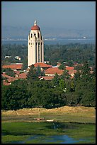Hoover Tower, Campus, and Lake Lagunata, afternoon. Stanford University, California, USA (color)