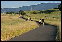 People jogging on trail in the foothills. Stanford University, California, USA