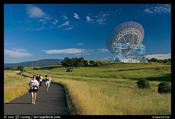 People running in the Stanford Dish area. Stanford University, California, USA (color)