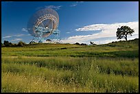 150 ft parabolic antenna known as the Dish, and tree. Stanford University, California, USA (color)