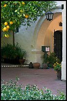 Orange tree and arch, Allied Arts Guild. Menlo Park,  California, USA (color)