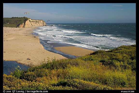 Beach with waves and kites, Scott Creek Beach. California, USA