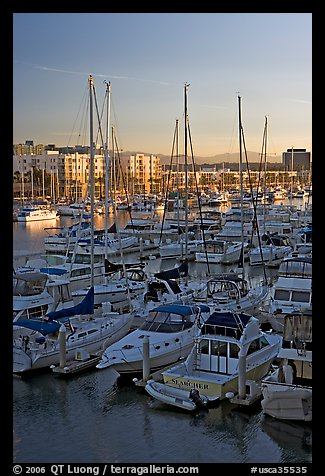 Yachts and marina at sunrise. Marina Del Rey, Los Angeles, California, USA