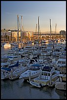 Yachts and marina at sunrise. Marina Del Rey, Los Angeles, California, USA (color)