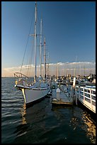 Yacht in Port of Redwood, late afternoon. Redwood City,  California, USA