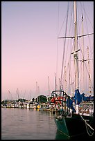 Yachts, sunset. Redwood City,  California, USA (color)