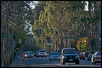 El Camino Real bordered by Eucalyptus trees. Burlingame,  California, USA (color)