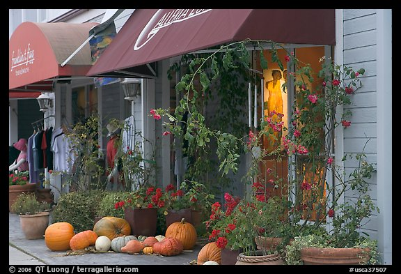 Storefronts decorated with large pumpkins. Half Moon Bay, California, USA (color)