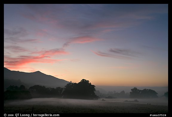 Foggy pasture at sunset near La Honda Road. San Mateo County, California, USA (color)