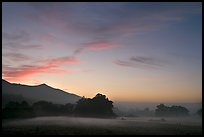 Foggy pasture at sunset near La Honda Road. San Mateo County, California, USA