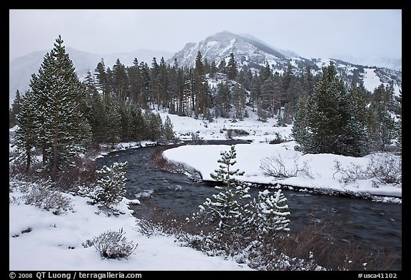 Creek, trees, and mountains with fresh snow. California, USA