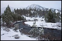 Creek, trees, and mountains with fresh snow. California, USA ( color)