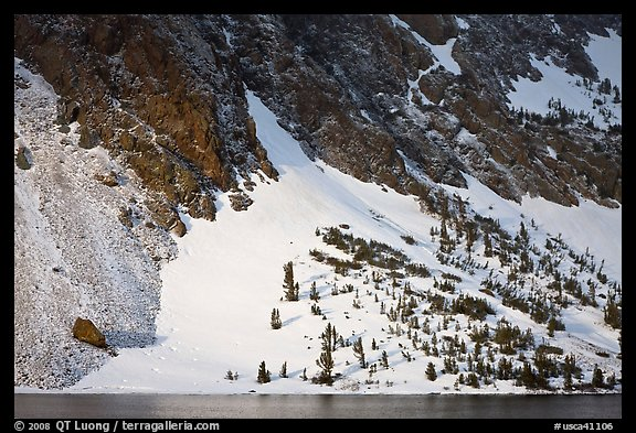 Sunlit Slope with snow, Ellery Lake. California, USA (color)