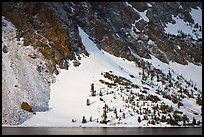 Sunlit Slope with snow, Ellery Lake. California, USA ( color)