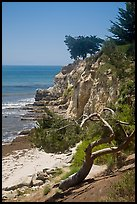 Coastal bluff. Santa Barbara, California, USA ( color)
