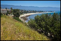 Hillside and waterfront. Santa Barbara, California, USA ( color)