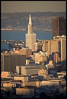 City Hall and Transamerica Pyramid, late afternoon. San Francisco, California, USA ( color)