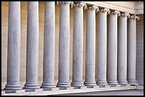 Row of columns, Legion of Honor, early morning, Lincoln Park. San Francisco, California, USA ( color)