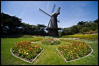 Spring flowers and old Dutch windmill, Golden Gate Park. San Francisco, California, USA